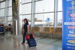 Demi Hugger Luggage Helper