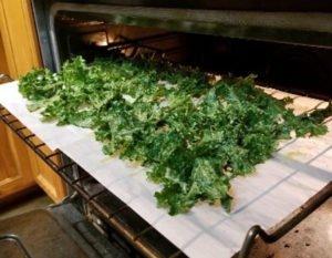 Amazing Kale Chips